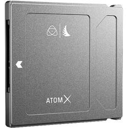ANGELBIRD TARJETA SSD MINI 1TB